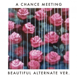 HARVARD / A CHANCE MEETING (BEAUTIFUL ALTERNATE VER.) [7INCH]